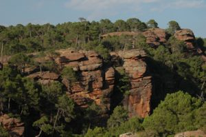 Los Pinares de Rodeno ofrecen vistas preciosas